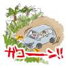 生後916日目-沖縄のトラウマ